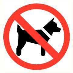 Pictogram verboden voor honden